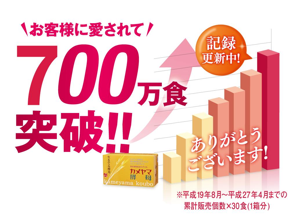 http://www.kameyamado.com/koubos/koubo/img7/body_2.jpg